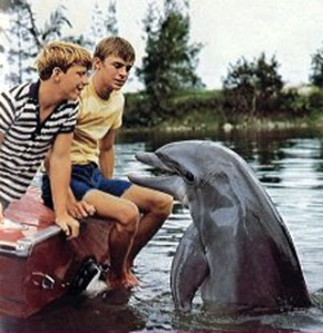 "A scene from the tv-show ""Flipper"", 1963"