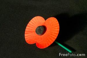 11_17_1-red-poppy-remembrance-sunday_web